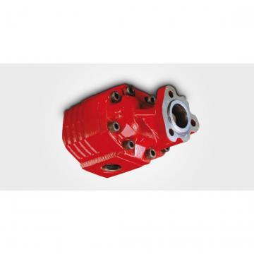 Galtech Idraulico Pto Cambio con Gruppo 3 Pompa, Ghisa