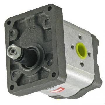 Aggregato Idraulico a Motore Con Pompa 200bar P. Es. Per Spaccalegna Parte Nuova