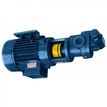 Hydraulic Gear Pump Group 2 4 Bolt EU Flange Taper Shaft CC BSP Motor Port Oil