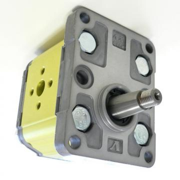 Zero Effort System for Double Acting Cylinder 0.45CC Gear Pump 19.5CC Handpump 1
