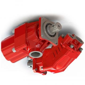 134A7-10301 Pompa idraulica pompa ad ingranaggi per TD27 FD20-30T7 MOTORE TCM carrello elevatore T3