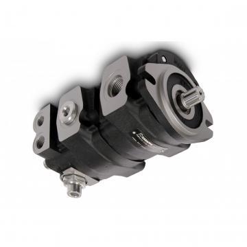 CASAPPA Zahnradpumpen Kit für Mehrfachpumpen Set Schrauben PLP 20 M10x165