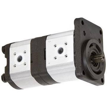 Pompa Idraulica del Veicolo Centralina Idraulica 24V DC Doppio Effetto Plastica